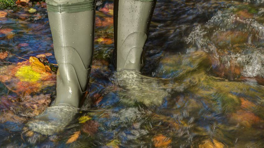 Hiker with high rubber boots goes through a creek in which lies colorful autumn leaves.
