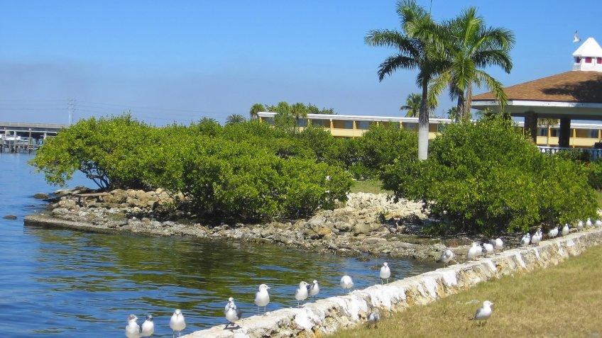 Punta Gorda, Florida - Image.