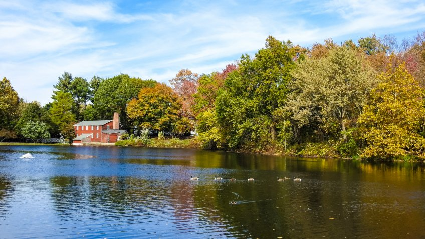View of Serene Coopers Pond - October 28, 2017.