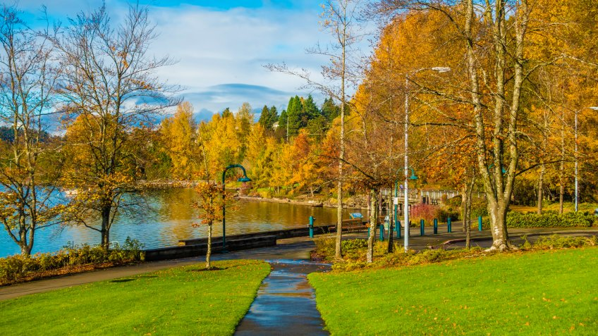 A view of autumn leaves at Coulon Park in Renton, Washington.