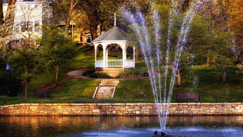 Salem Virginia Duck Pond - Image.