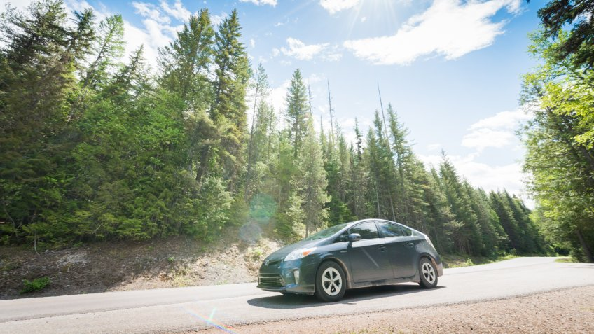 Glacier National Park, United States - May 11, 2016: On a sunny spring day a Toyota Prius hybrid car drives through a tree lined road in Montana while on a road trip.