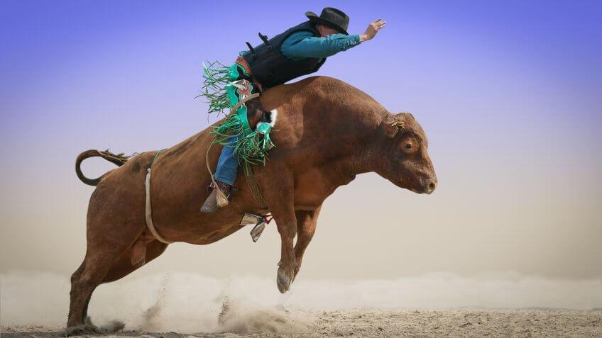 cowboy riding a bull