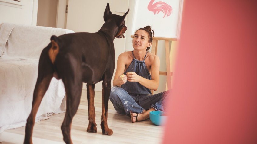 Trained doberman pinscher is in the art studio, keeping company to his female owner.