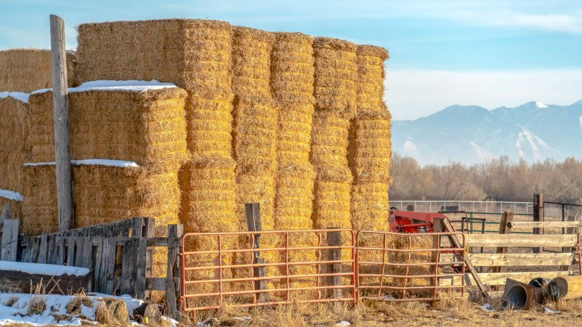 Blocks of hay piled inside a fenced area on a farm in Eagle Mountain Utah.