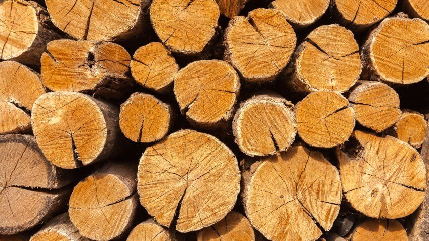 Dry oak firewood stacked in a pile, not chopped whole wood for winter heating fireplace.