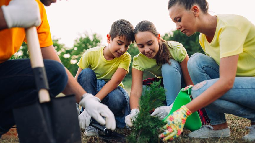 Photo of volunteers planting seedlings of trees in the park.