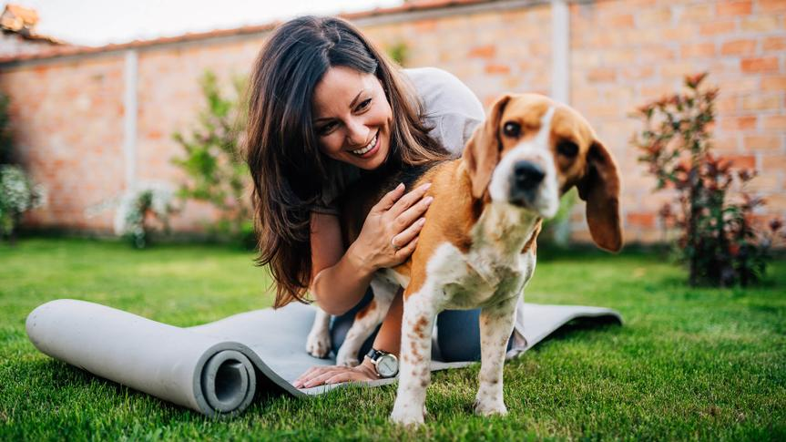 Girl playing with her beagle dog in yard.