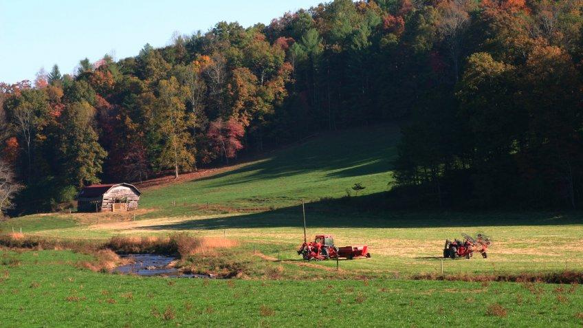 Barn in field with a touch of fall near Ellijay Georgia.