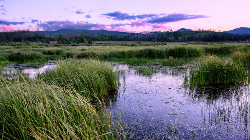 Sunset over wetland area, Fraser Valley, Colorado - Image.