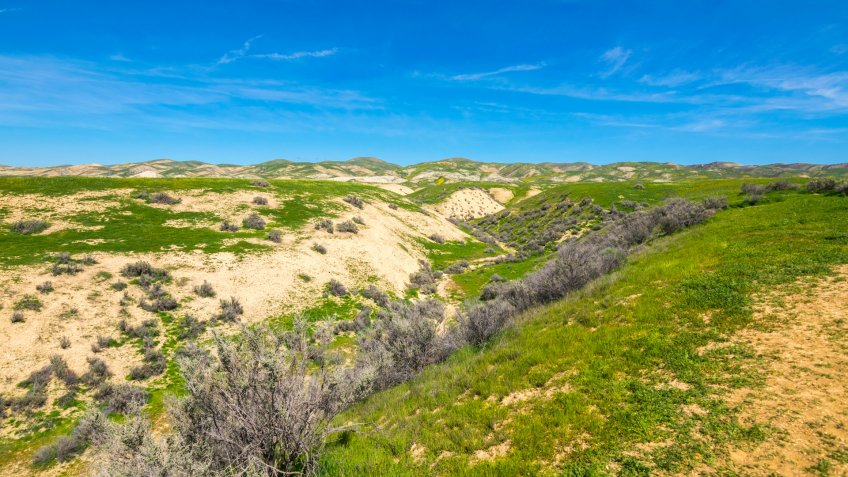 Wallace Creek, Carrizo Plain National Monument, San Andreas Fault (boundary between the Pacific Plate and the North American Plate), California USA, North America - Image.