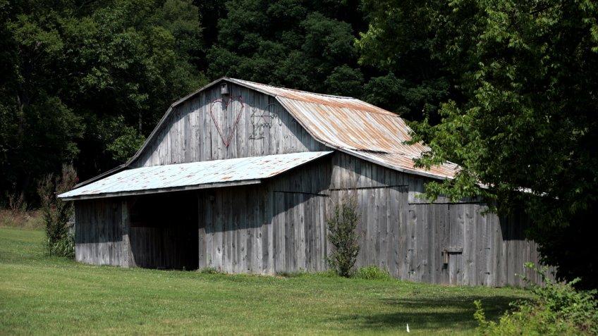 City Barn - Image.