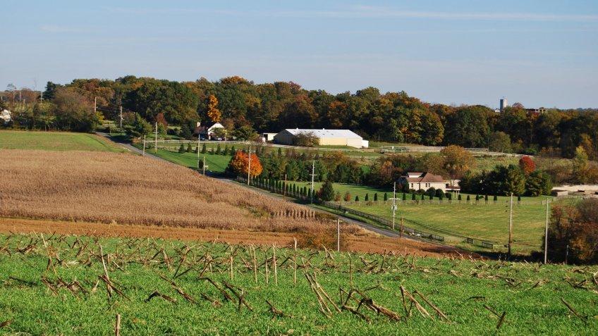 Farm Field in Clarksburg during Fall Season , MD USA - Image.