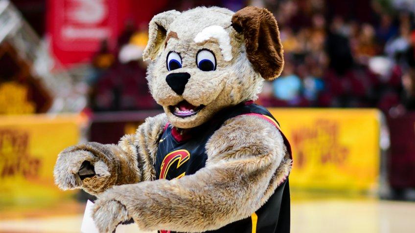 Cleveland Cavaliers Moondog mascot avaliers Moondog mascot