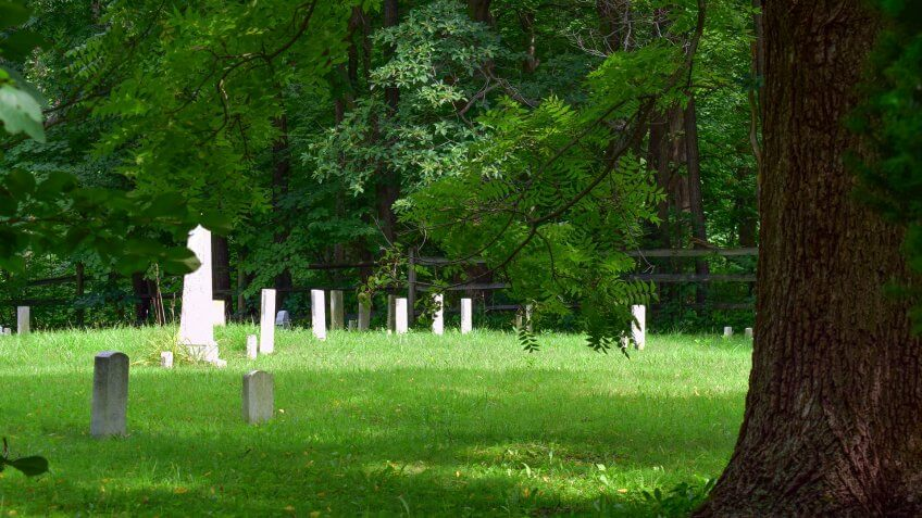 Old cemetery in the woods - Image.