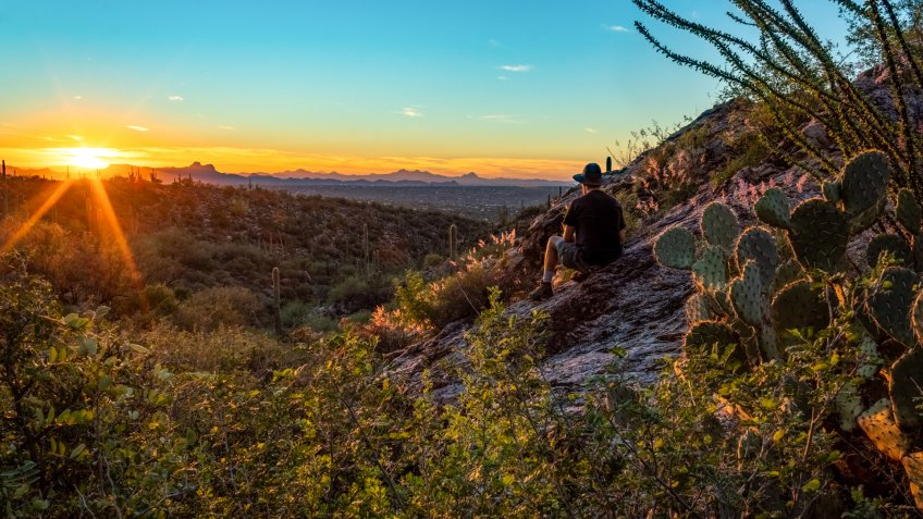 A hiker watching the sunset surrounded by buffel grass, ocotillo, prickly pear cactus, and other Sonoran Desert plants.