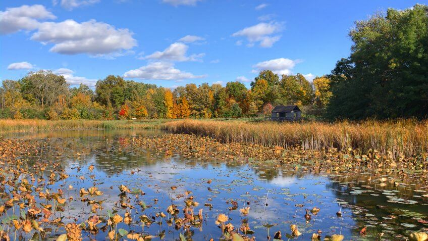 Beautiful autumn scene at a tranquil fishing pond in Ohio.