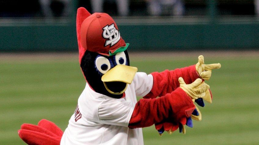 St Louis Cardinals mascot Fredbird