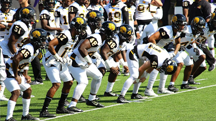 University of Arkansas Pine Bluff football team