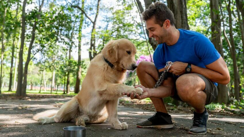 Happy Brazilian man training with his dog at the park asking him to give his paw - lifestyle concepts.