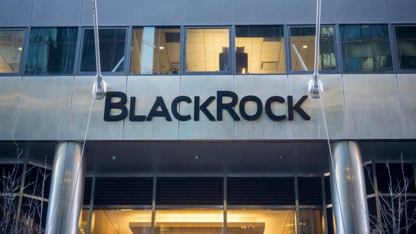 BlackRock investment