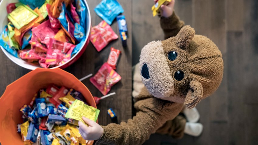 Cute Baby Boy inside Bear Costume Eating or Grabbing Candies at Halloween.