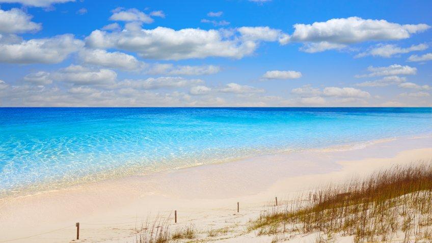 Destin beach in florida ar Henderson State Park USA - Image.