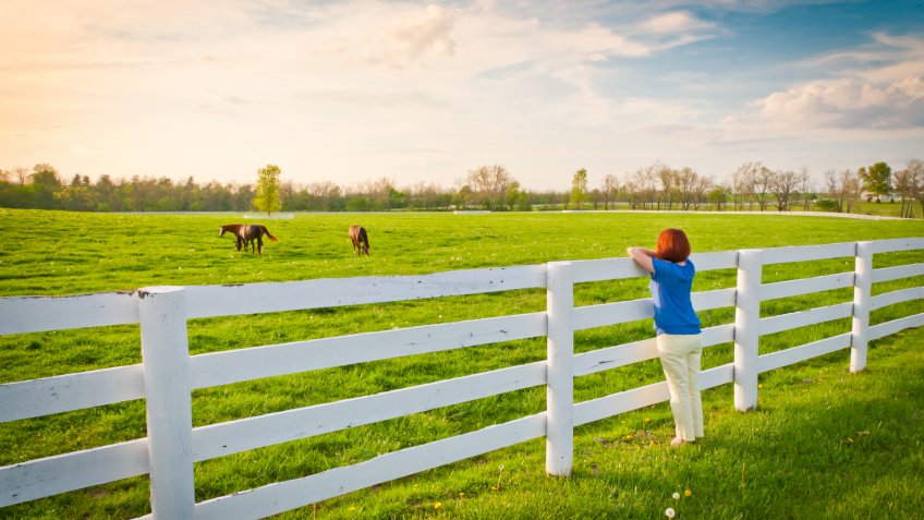 Woman enjoying countryside view with green pastures and horses at evening golden hour.