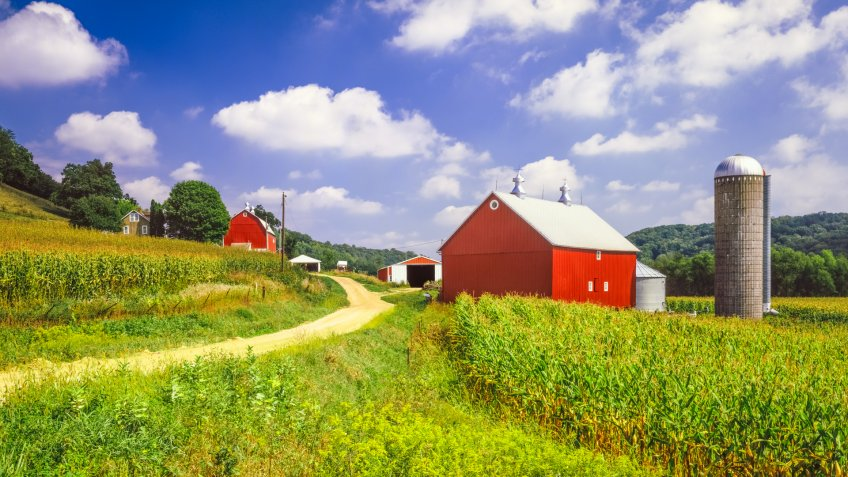 Wisconsin farm and corn field near Madison.
