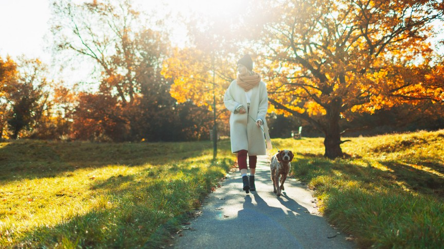 Young woman walking dog in sunny autumn park.