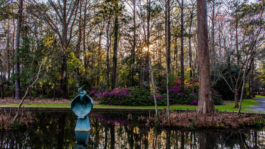 Azalea Park Summerville South Carolina.