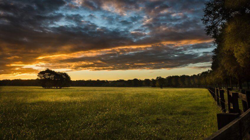 Daybreak over field.