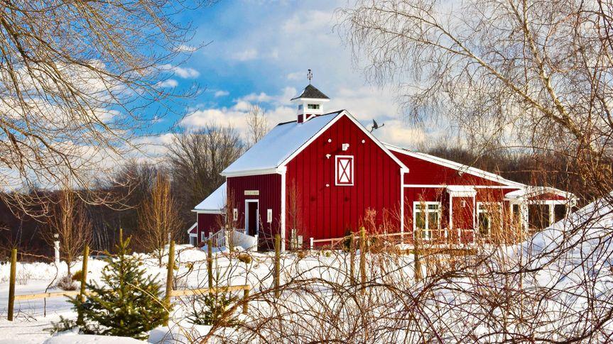 Broken Creek Vineyard in Shrewsbury, Massachusetts - Image.