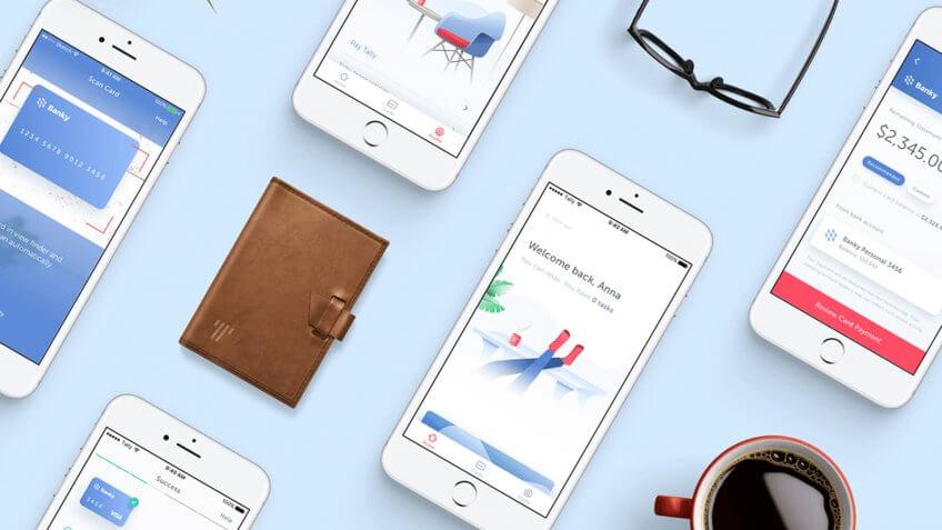 Tally financial debt management app