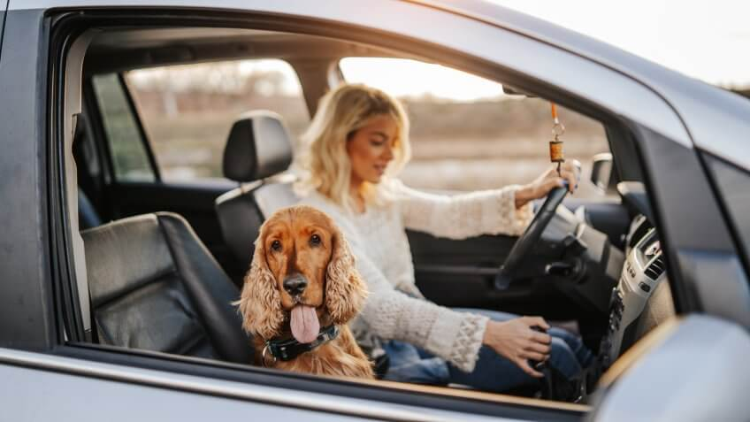 Young woman and her dog in car.