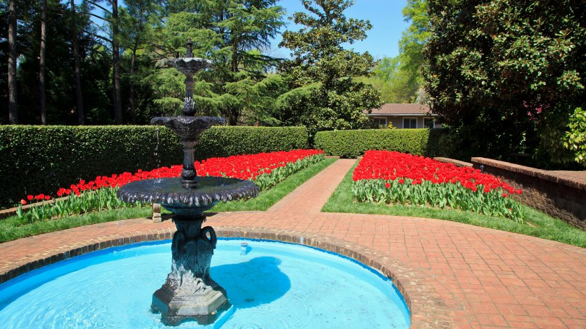Red tulips in bloom and a water fountain in this garden in North Carolina.