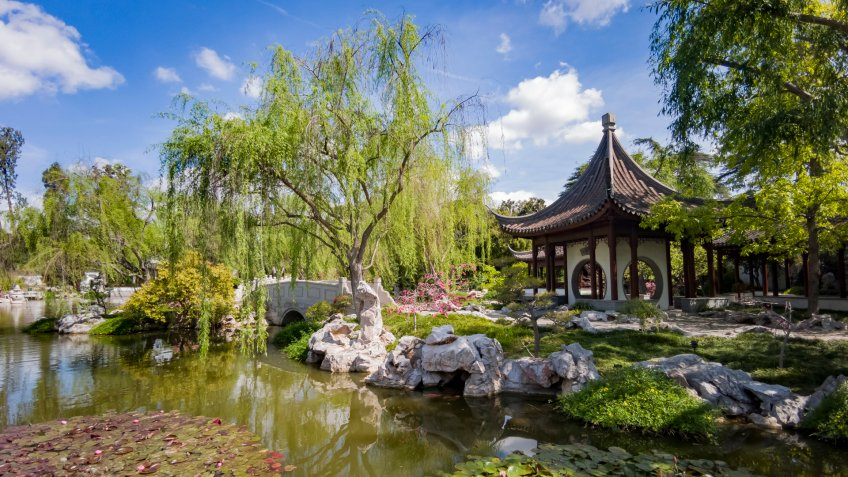 Los Angeles, APR 5: The beautiful Chinese Garden of Huntington Library on APR 5, 2019 at Los Angeles, California - Image.