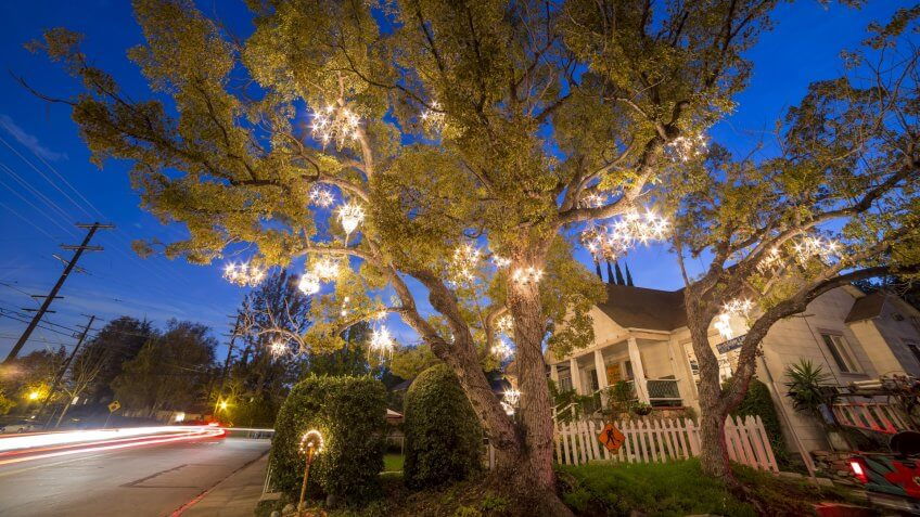 DEC 19, Los Angeles: The famous Chandelier Tree on DEC 19, 2014 at Silver Lake, Los Angeles.