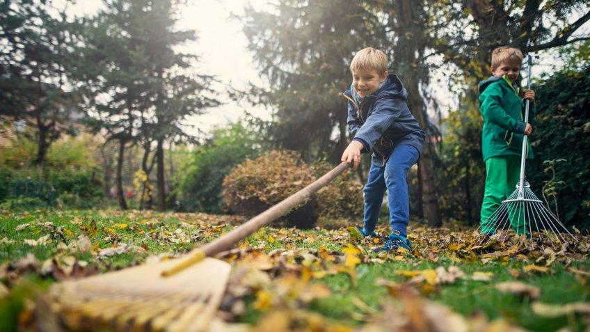 Little boys raking autumn leaves.