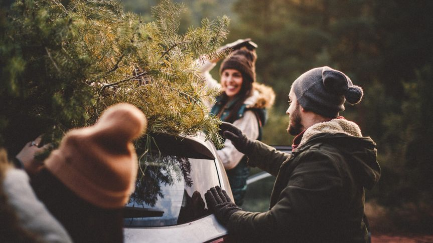 friends picking up Christmas tree with new car