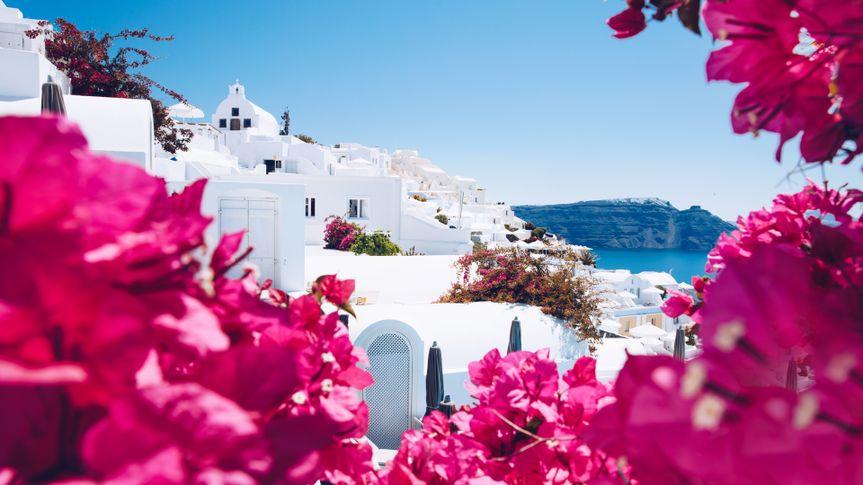 Summer Greece Santorini scenic view landscape punk flower border.