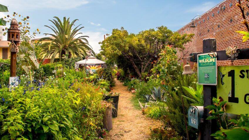 LONG BEACH, CA: July 15, 2017: Urban garden Certified Wildlife Habitat in East Villages Arts District.