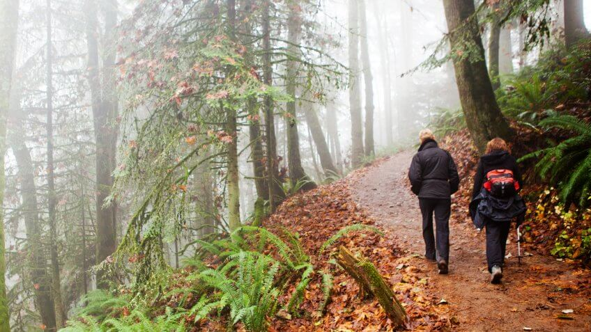 Portland, Oregon, USA - November 28, 2011: Two women hike through a foggy forest in Portland, Oregon on a cold winter day.