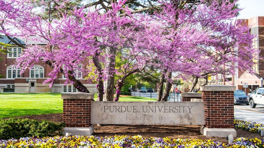 Purdue University garden with Western Redbud tree in the corner of Grant and State Streets.