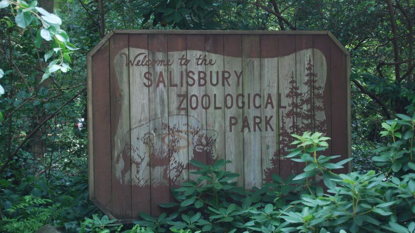Maryland - Salisbury Zoo.