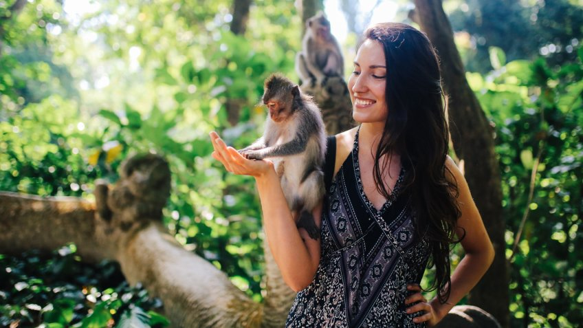 Young woman playing with macaque monkeys near the famous Monkey Forest in Ubud, a small town in Bali, Indonesia.