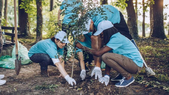 Multi-ethnic group of people, cleaning together in public park, saving the environment, disability man helping them.