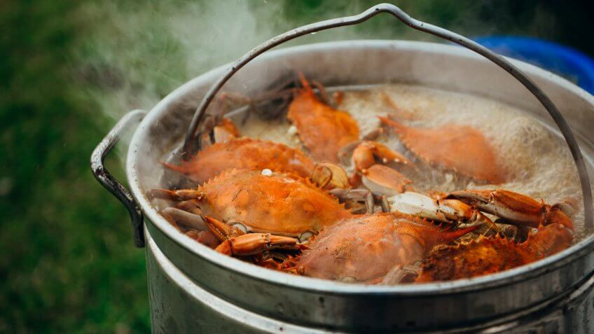 cooked blue crabs boil in a giant pot at a Carolina crab boil.