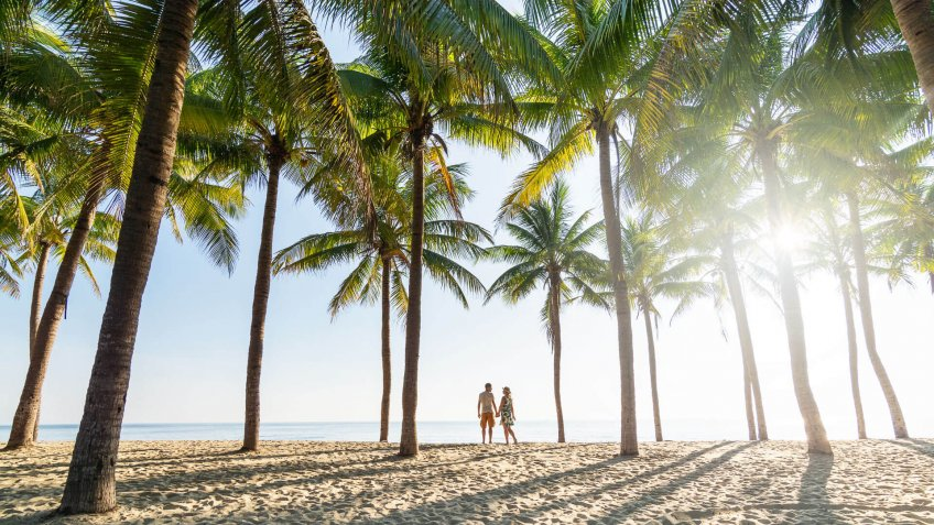 Couple standing on sandy beach among palm trees on sunny morning at seaside.