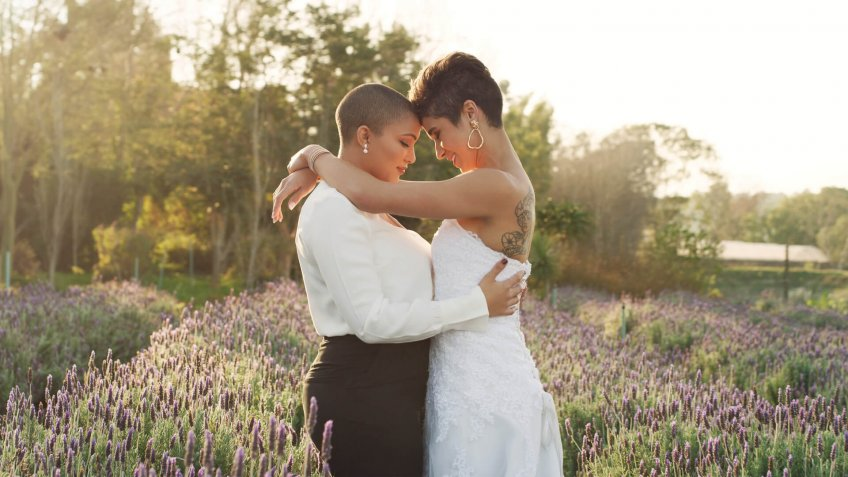 Cropped shot of an affectionate young lesbian couple  standing with their arms around each other in a meadow on their wedding day.